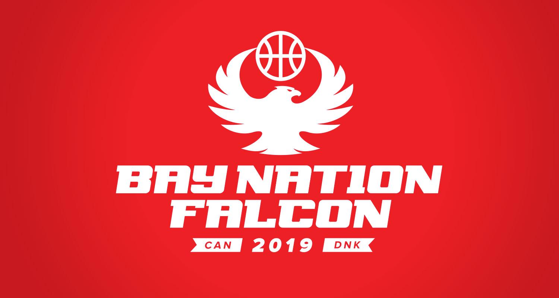 BNEFalcon_Logo